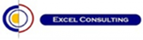 Excel Consulting